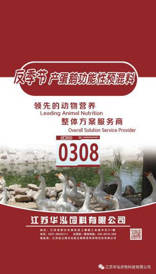 0308-蛋鹅产蛋高峰期